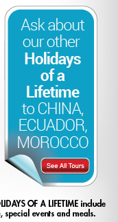 See All Tours